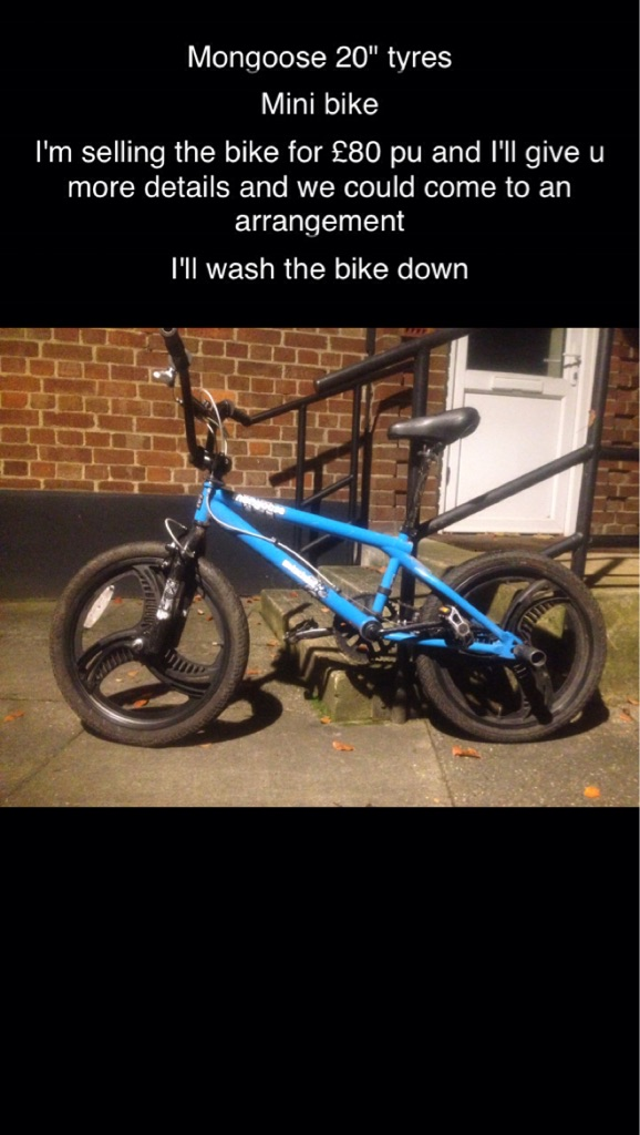 Blue Mongoose bike