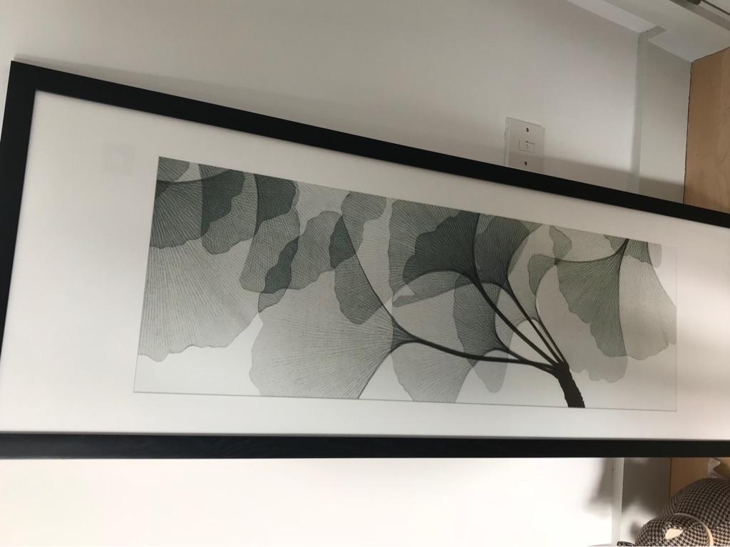 Contemporary Garden Print with wooden frame