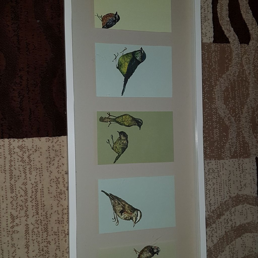 Extra large framed bird picture