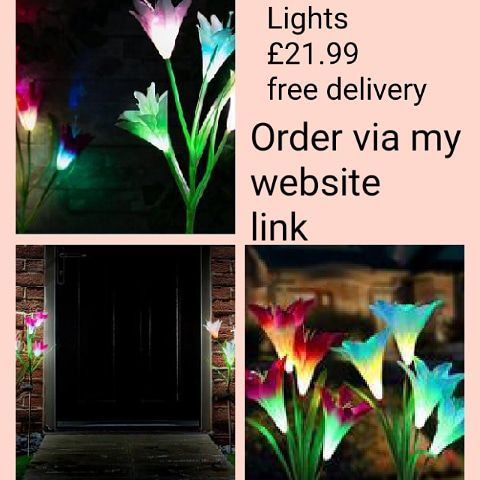 💖2 Solar Lily Lights💖 💥£21.99 🚚free delivery