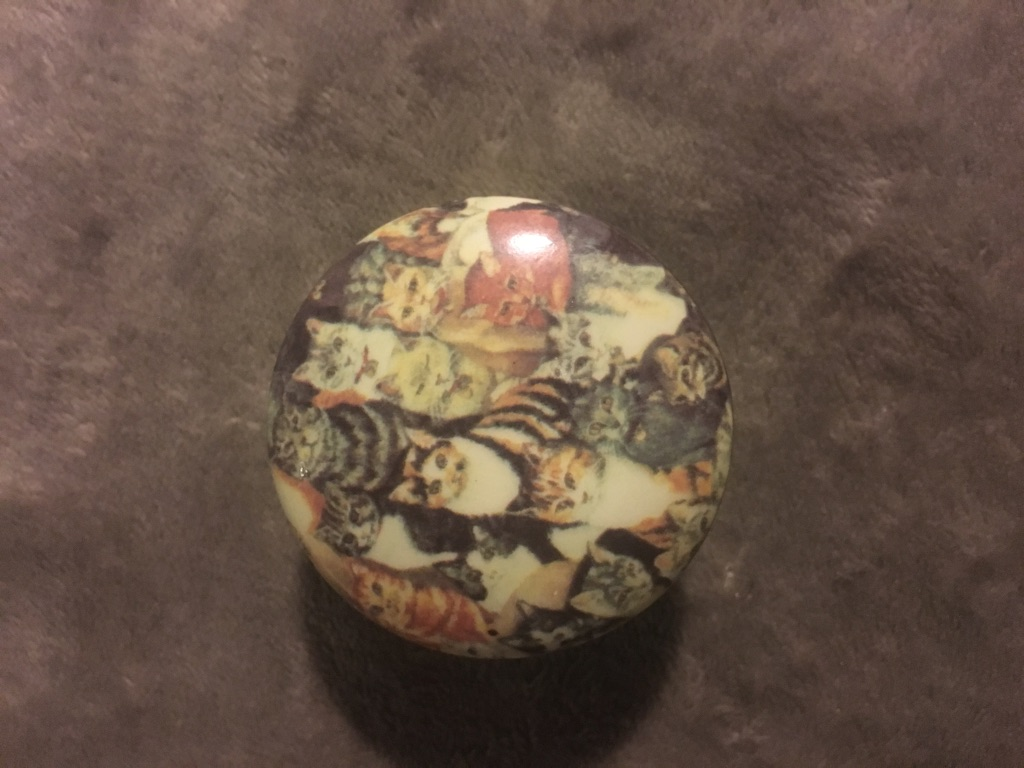 Vintage Aristocats Pillbox