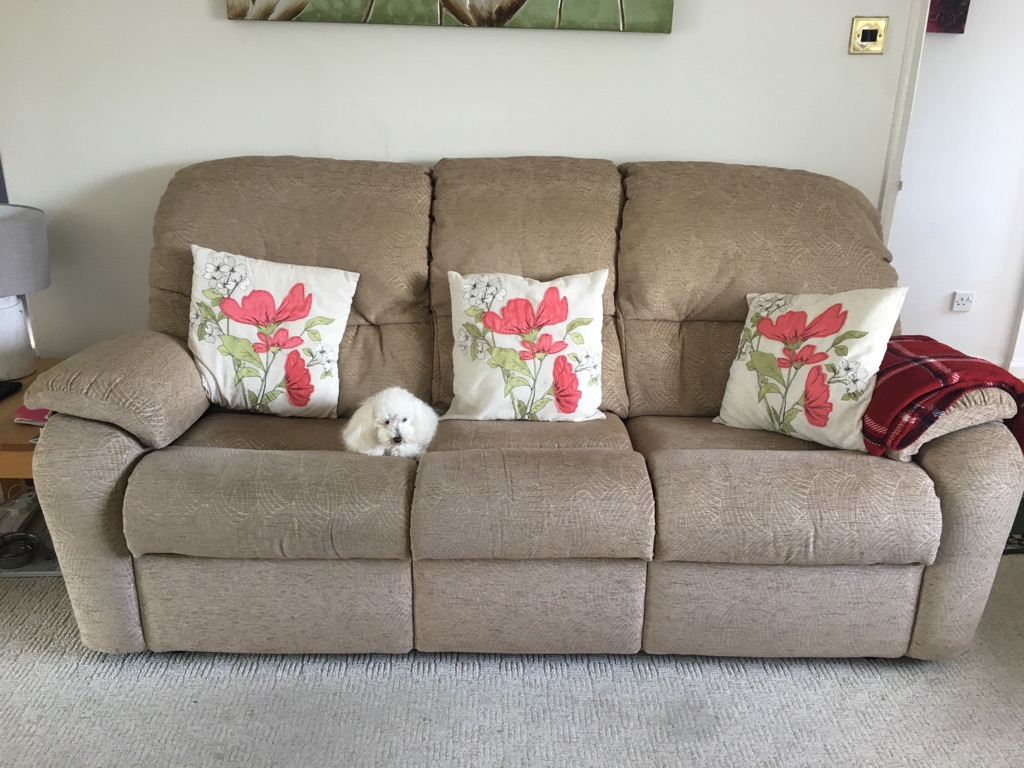 G Plan 3 seater sofa and armchair