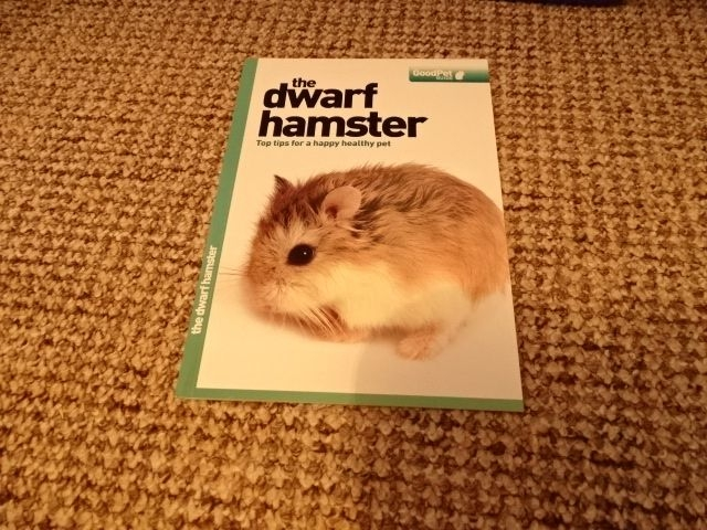 Dwarf hamster pack