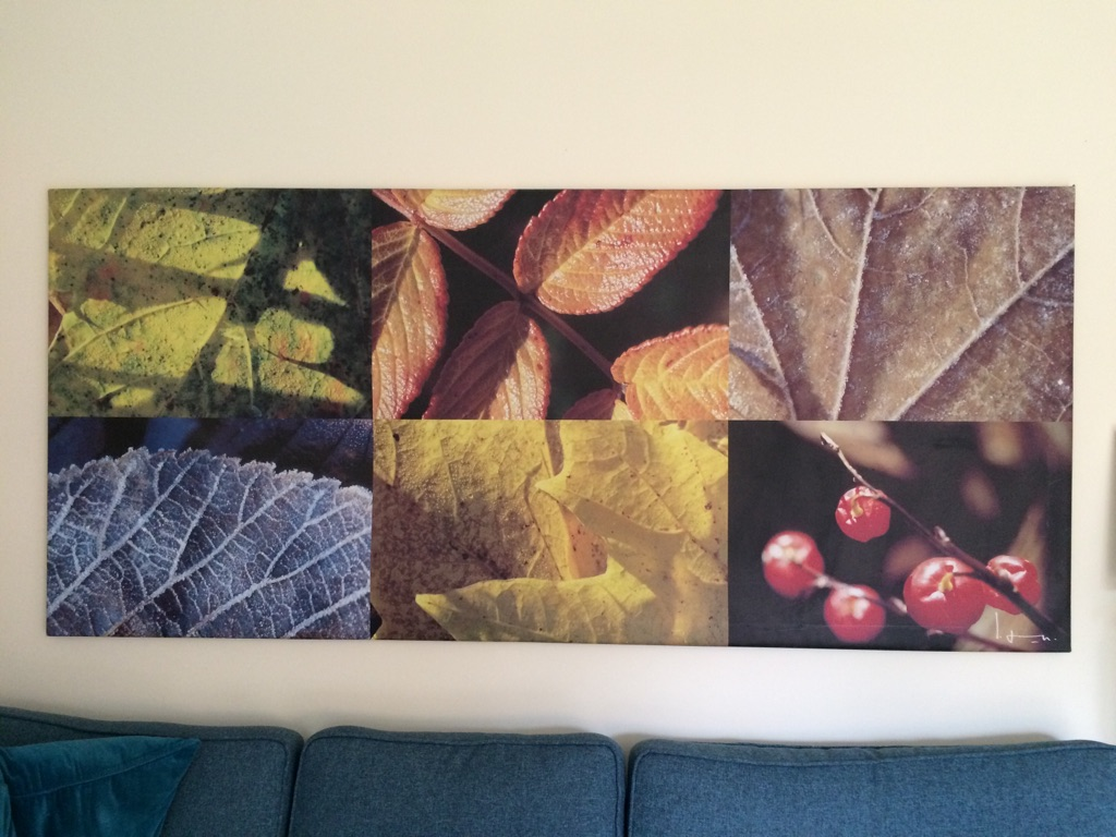 Autumnal metal framed canvas