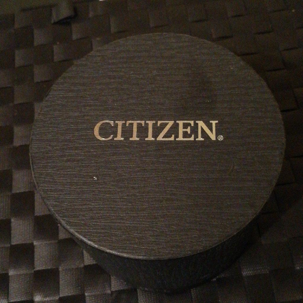 Mens Citizen Watch