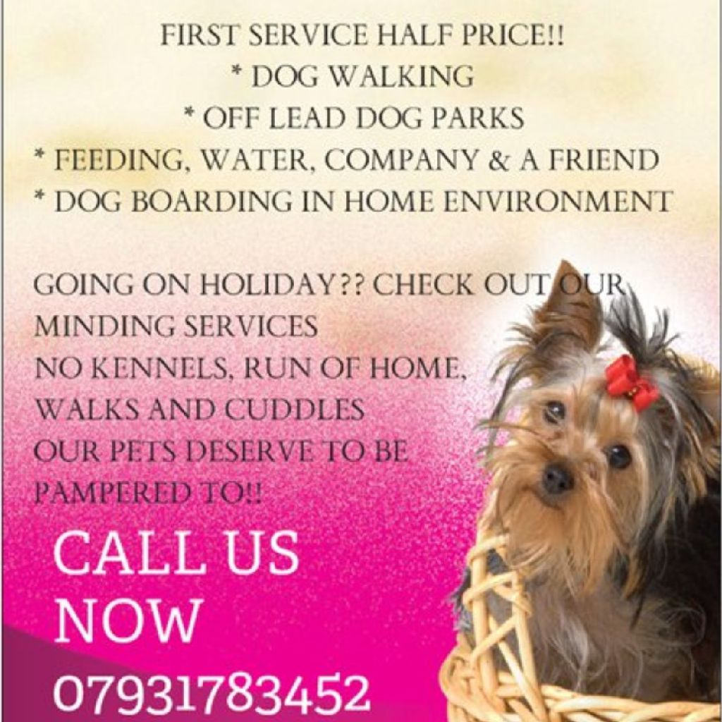 POOCHES dog walking and home boarding services