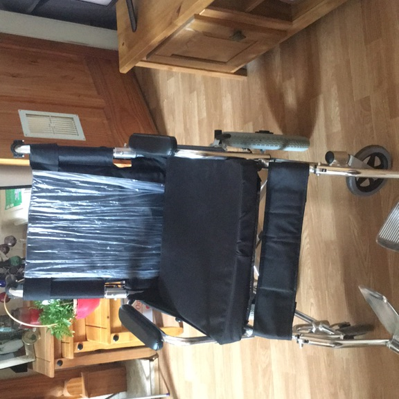 Wheelchair and cane