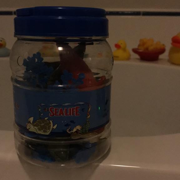 Sealife Bucket