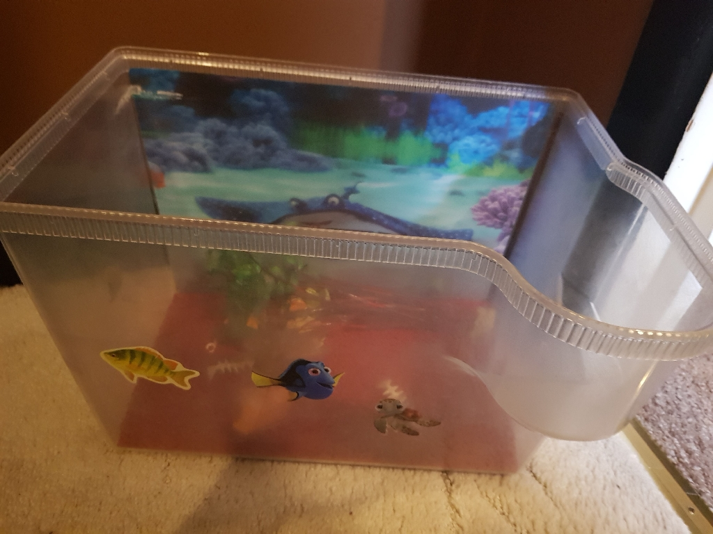 Finding Dory fish tank